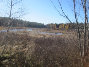 Durgin Pond